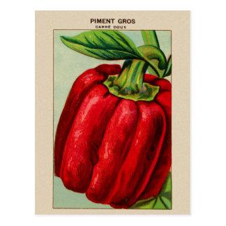 Cartão Postal Pimenta de Bell vermelha francesa Piment do