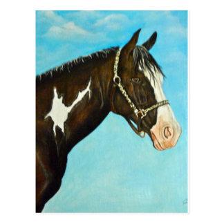 Cartão Postal Pinte o cavalo