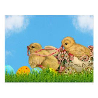 Cartão Postal Pintinhos da páscoa da primavera