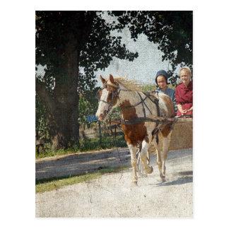 Cartão Postal Pinto e crianças no carrinho