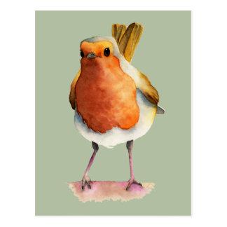 Cartão Postal Pintura da aguarela do pássaro do pisco de peito