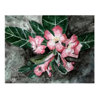 Cartão Postal Pintura da flor do rosa de deserto