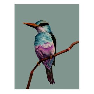Cartão Postal Pintura do pássaro da cor do algodão doce
