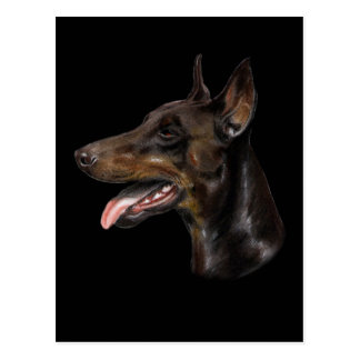 Cartão Postal Pintura Pastel do cão do Doberman