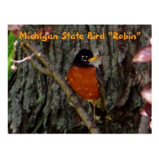 Cartão Postal Pisco de peito vermelho do pássaro de estado do