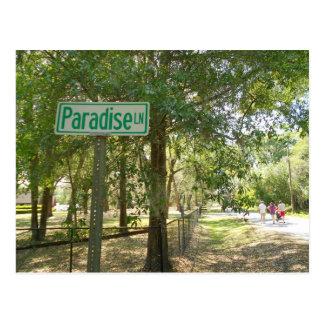 Cartão Postal Pista Florida do paraíso