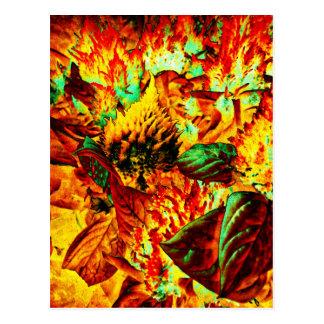 Cartão Postal planta no fogo