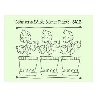 Cartão Postal Plantas do acionador de partida da planta e do