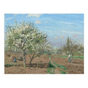 Cartão Postal Pomar na flor, Louveciennes France por Pissarro