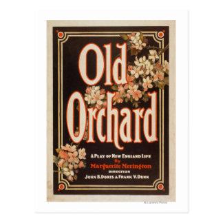 Cartão Postal Pomar velho um jogo do poster da vida de Nova