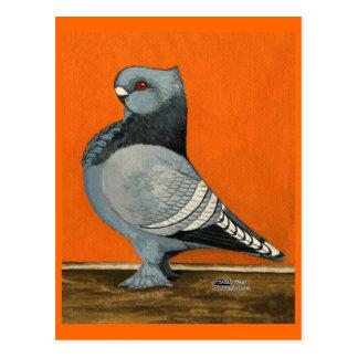 Cartão Postal Pombo azul de Blondinette