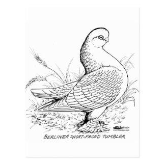 Cartão Postal Pombo berlinês preto e branco