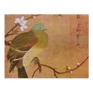 Cartão Postal Pombo em um ramo do pêssego