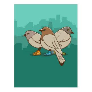 Cartão Postal Pombos com design gráfico da foto engraçada das