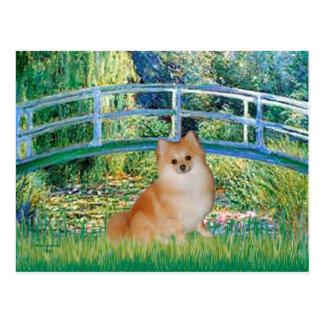 Cartão Postal Pomeranian 3 - Ponte