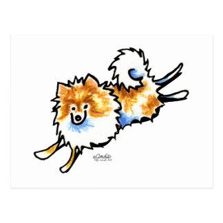 Cartão Postal Pomeranian branco alaranjado bonito