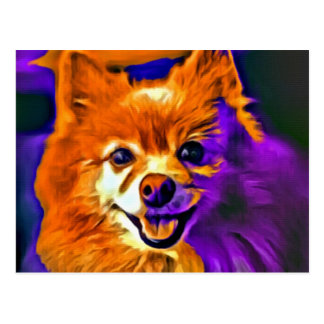 Cartão Postal Pomeranian feliz #3