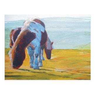 Cartão Postal Pôneis de Dartmoor & pintura de paisagem enevoada