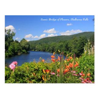 Cartão Postal Ponte das flores, quedas de Shelburne