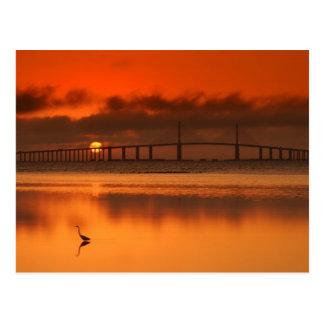 Cartão Postal Ponte de Skyway