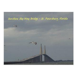 Cartão Postal Ponte St Petersburg da maneira do céu da luz do
