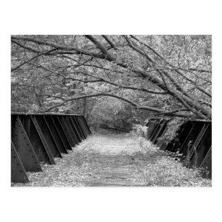 Cartão Postal Ponte velha da estrada de ferro