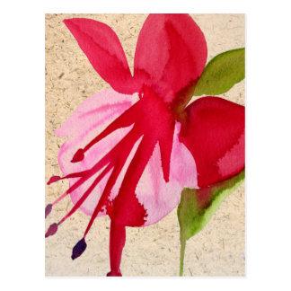 Cartão Postal Pop art fúcsia cor-de-rosa da flor do watercolour