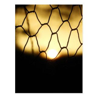 Cartão Postal Por do sol através da cerca
