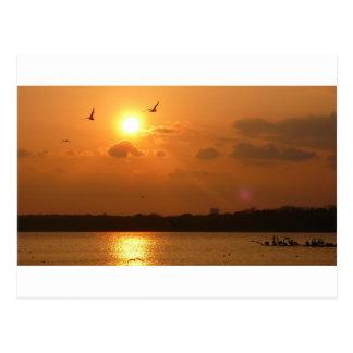 Cartão Postal Por do sol de Dallas