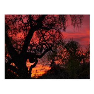 Cartão Postal Por do sol de Ojai