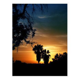 Cartão Postal Por do sol de San Diego