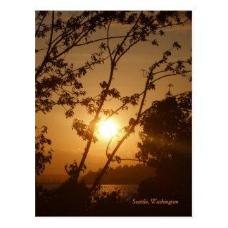 Cartão Postal Por do sol de Seattle