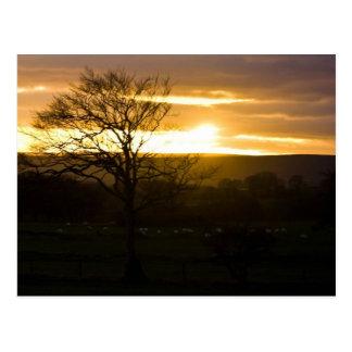 Cartão Postal Por do sol em North Yorkshire