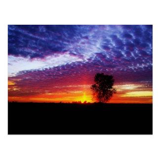 Cartão Postal Por do sol ideal da herdade dos pacificadores
