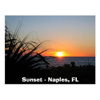 Cartão Postal Por do sol - Nápoles, FL