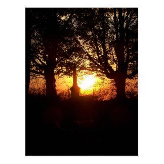 Cartão Postal Por do sol no cemitério
