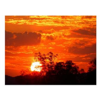 Cartão Postal Por do sol romântico