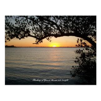 Cartão Postal Por do sol sob a árvore