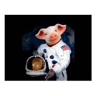 Cartão Postal Porco do astronauta - astronauta do espaço