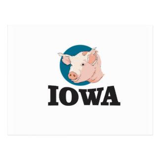 Cartão Postal porcos de iowa