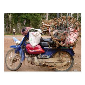 Cartão Postal Porcos em velomotor-Cambodia