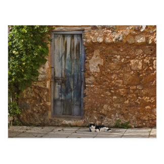 Cartão Postal Porta velha e gato de descanso