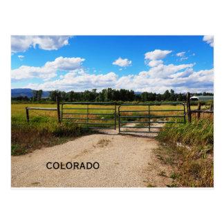 Cartão Postal porta verde por uma pradaria de Colorado