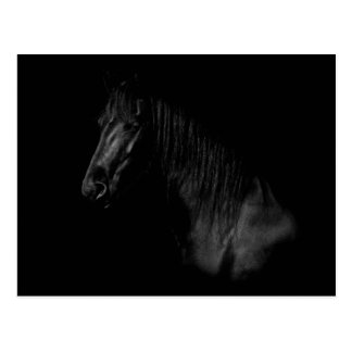 Cartão Postal Portrait elegantes duma Friesen preta cavalo