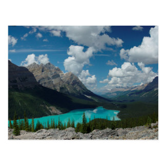 Cartão Postal Postcard Lake Peyto in Banff National Park, Canada