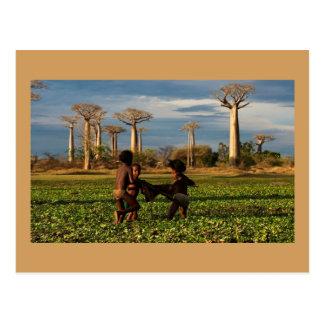 Cartão Postal Postcard World Madagascar Spirit