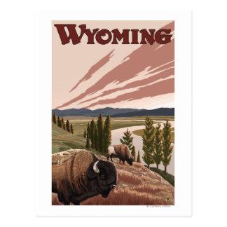 Cartão Postal Poster das viagens vintage do bisonte de