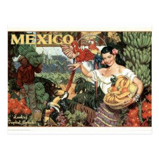 Cartão Postal Poster de México do vintage