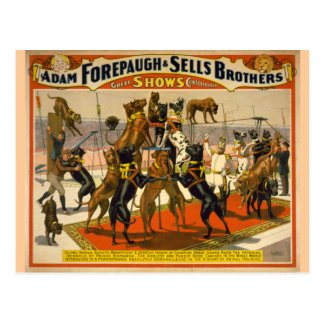 Cartão Postal Poster do circo dos grandes dinamarqueses/cães