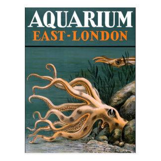 Cartão Postal Poster vintage do polvo do aquário restaurado